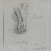 From Kells Priory Co. Kilkenny 15 April 1864