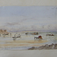 gathering seaweed for manure - on shore near … [?] on Bannow, Co. Wexford, 20' Oct. 1849