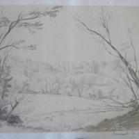 Powerscourt, Co. Dublin [recte Wicklow]